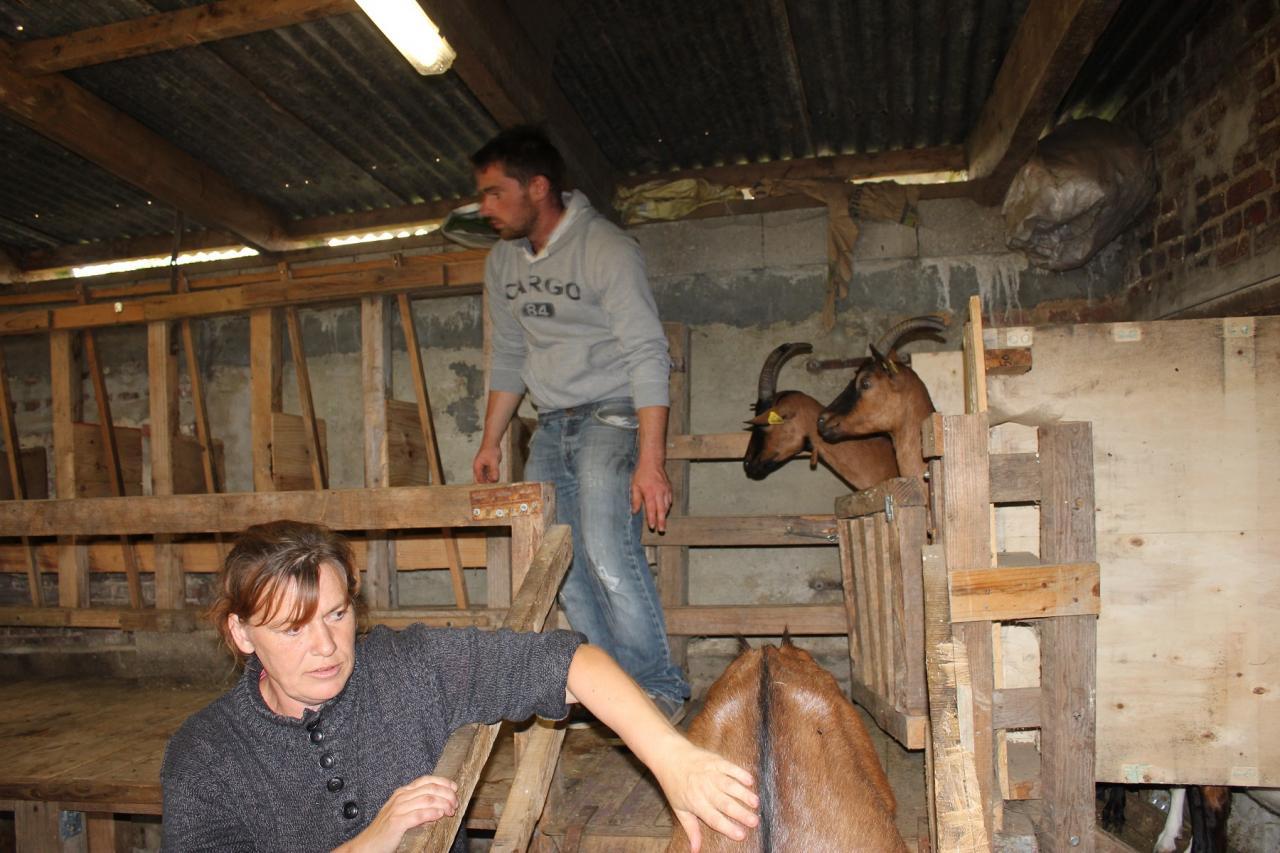 Fête de la chèvre 2015 - L'échertuette