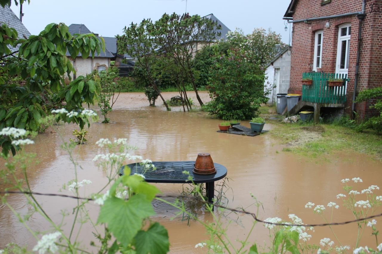 Maisons et jardins inondés